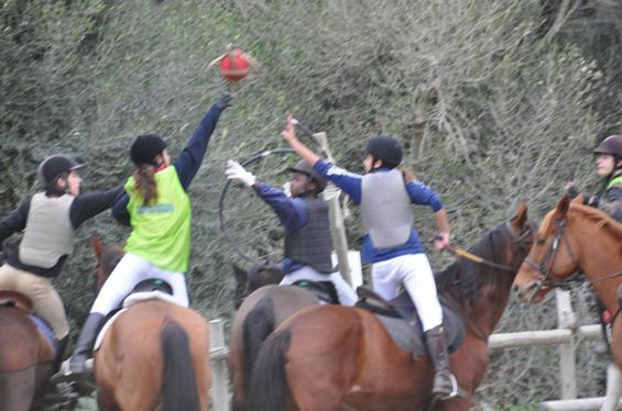 horseball6