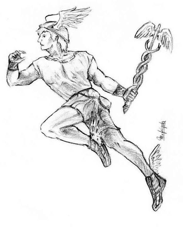 Hermes (dibuix Marta Frigola)