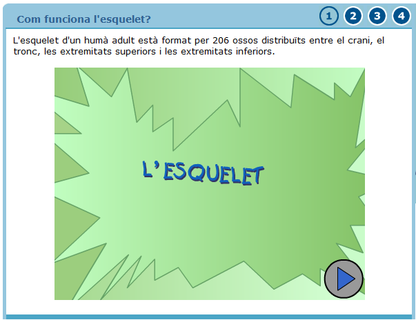 http://blocs.xtec.cat/elracodelespiranyes/files/2012/01/2.png