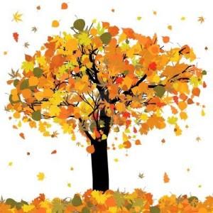 2_arbre_tardor