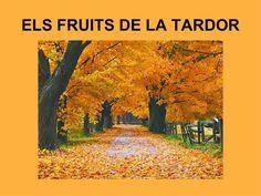 7b955e0d8c0ca57cf2ef6e7d8865af56--fruit