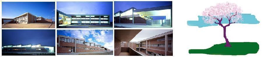 Escola Pla de l'Ametller Curs 2013-14