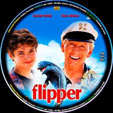 Caratula Flipper