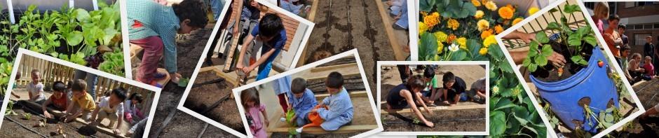 Escola Verda Argentona