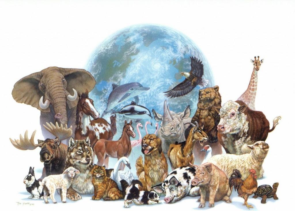 animal_mural.jpg