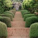 jardin20botanico20de20blanes1