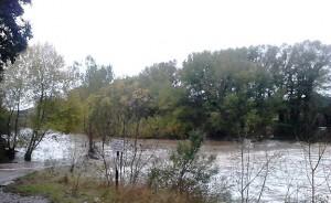 fluvià per Vilert