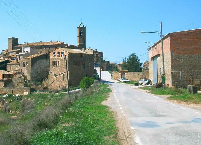 Florejacs (3)