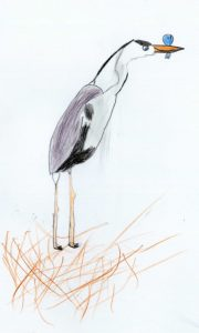 Carlota-Pino-bernat-pescaire-imatge-530x882