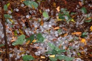 diametre-les-precipitacions-solides-permet-parlar-pedra-alguns-punts-com-gleva-foto-manel-dot