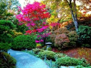 los-colores-en-el-jardin