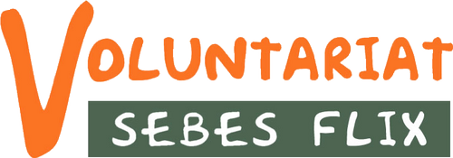 voluntariat-sebes