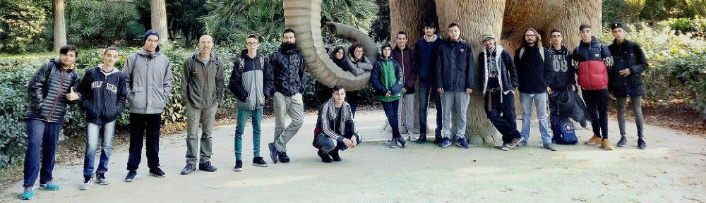 Cicle Formatiu de GM de Jardineria i Floristeria de l'Institut La Talaia