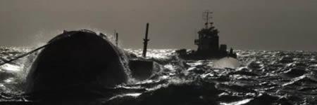 L'energia dels oceans