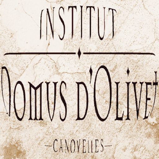 cropped-LOGO-DOMUS_antic.jpg
