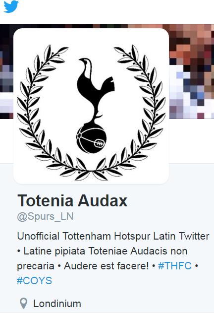 Totenia audax