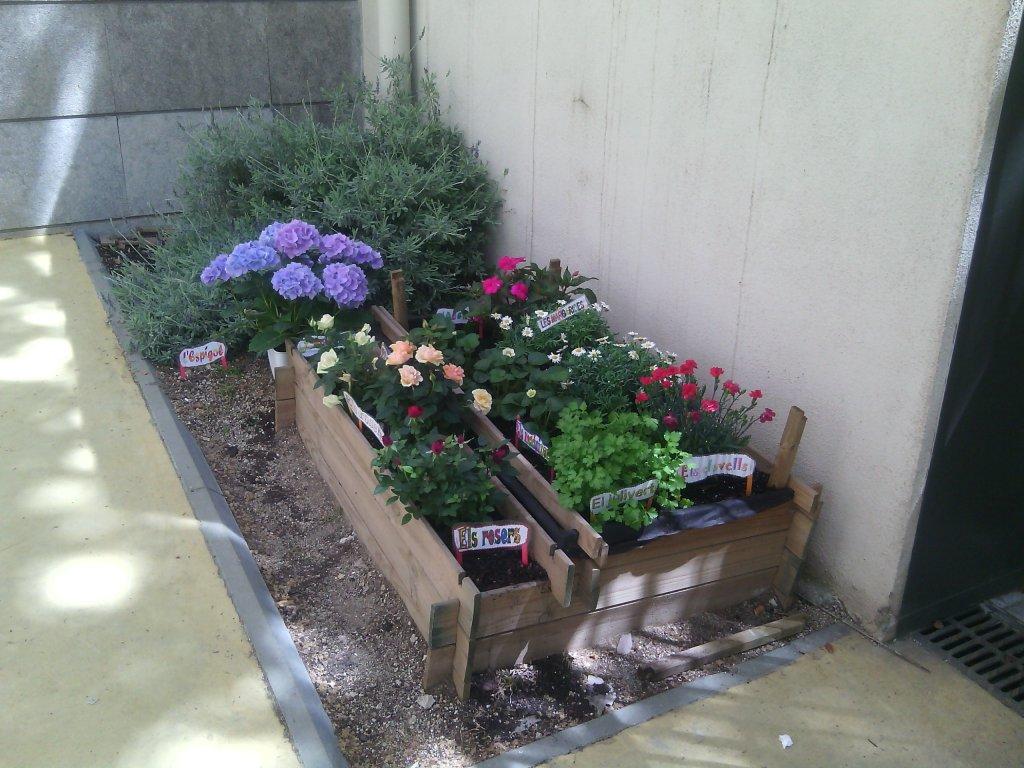 jardinet1