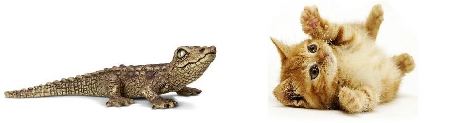 Cocodrils i Gats