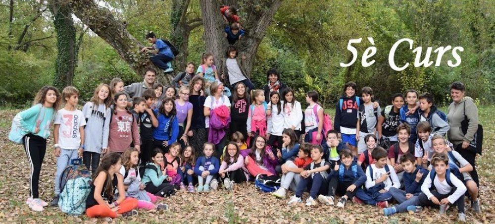 Escola Marià Manent, 5è