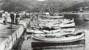 rodolins catalans