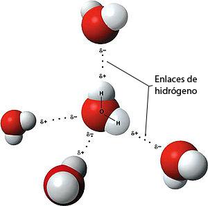 moleculasagua