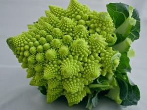naturalesa fractal 2