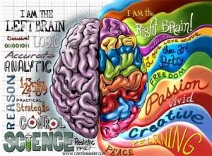 Hemisferio-derecho-e-izquierdo-Inspiramundo-300x221