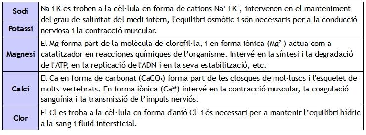 bioelements secundaris