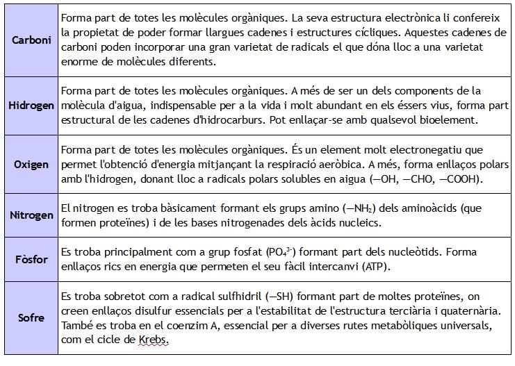 biolements primaris