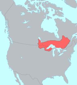 250px-ojibwe_language_map.png