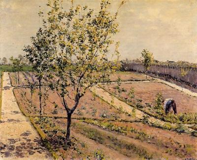 G. Caillebotte. L'hort, 1881-1882.