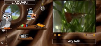 aquari-edu365