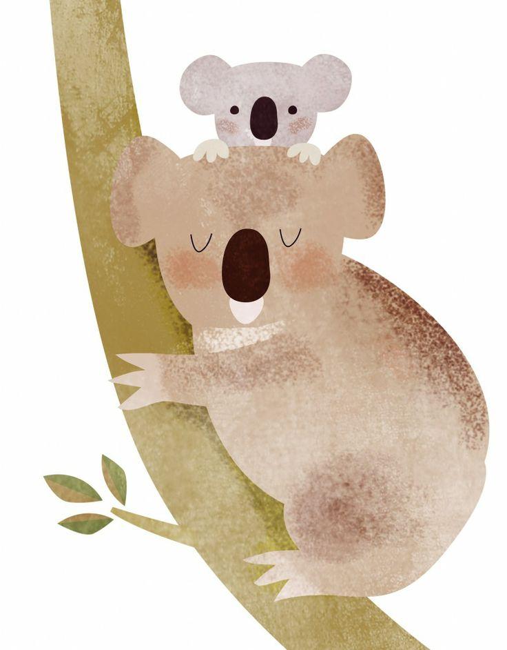 peluche koala, carlos reviejo Dermot Flynn