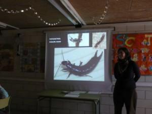 Vam estudiar fauna i flora