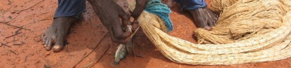 Projecte Solidari Gàmbia