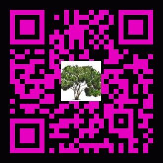 acba5a40ce892d4711edcb6921f22ee3 (1)