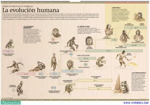Evolucion-humana ATAPUERCA