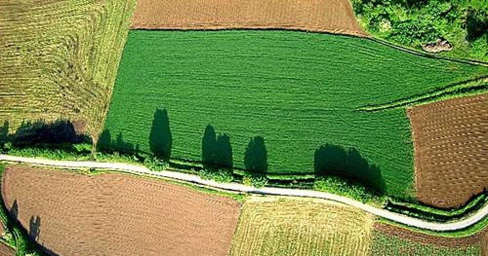 cropped-paisatge-agrari-del-parc-natural-de-la-zona-volcanica-de-la-garrotxa_177057.jpg