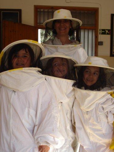 apicultura1.jpg
