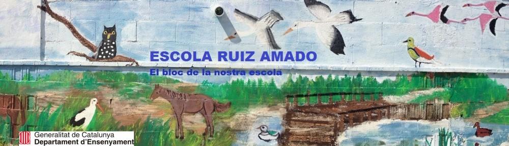 ESCOLA RUIZ AMADO