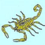 escorpi