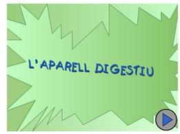 digestiu