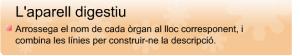 digestiu2