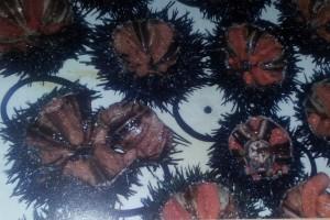 """""""Garotes condimentades"""".  FONT: Apici, L'art de la cuina, IX, VIII, I"""
