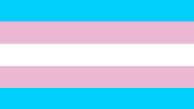 Bandera de l'orgull transgènere (ambienteg.com)