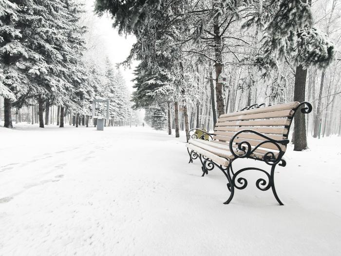 Interpretación Soñar Con Nieve
