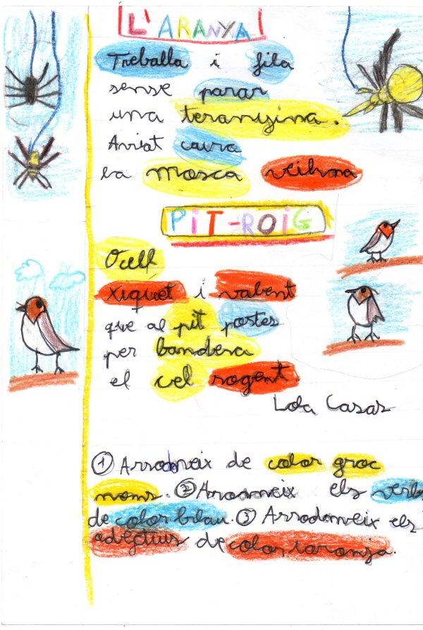 aranyapitroiglola01