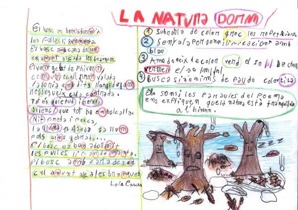 lanaturadormlolacases02