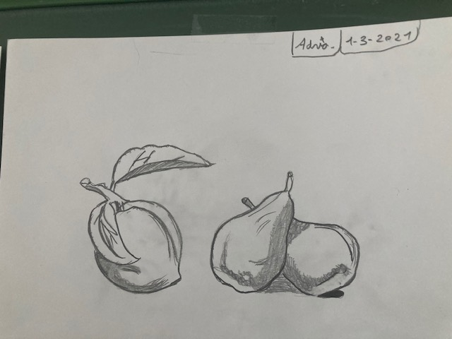 Dibuix010