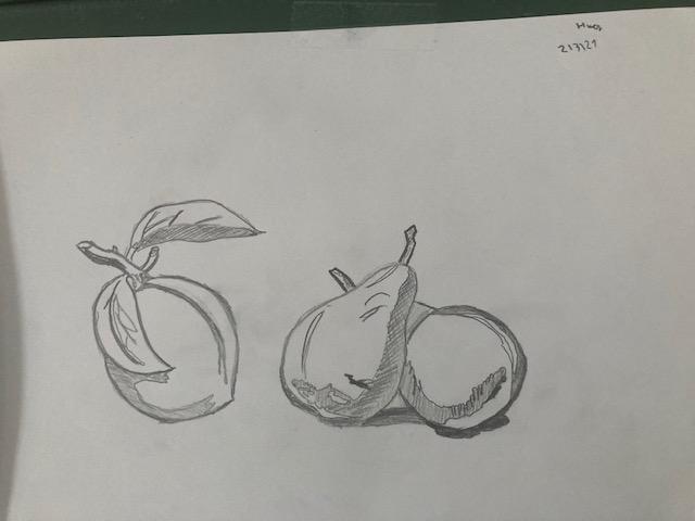 Dibuix08